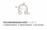 "Hevosenkenkä ""Rose Gold Pvd Surgical Steel 1,6 mm"""