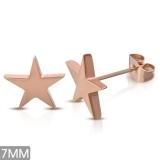 """316L Kirurginteräs korvakorut """"Rosegold Star Stud Earring"""""""